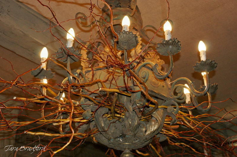 Chandelier and branches