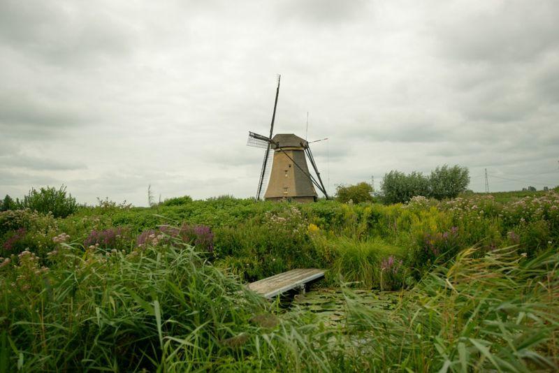 Singlewindmill 1024x768