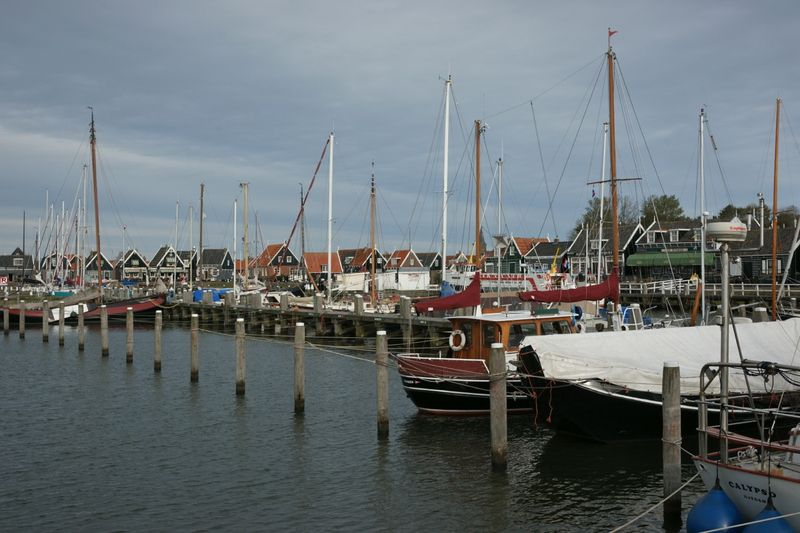 Havenfini