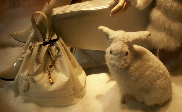 Rabbit_and_handbag
