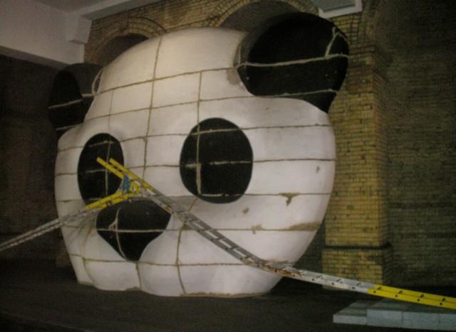 A giant panda bear head has thin ...