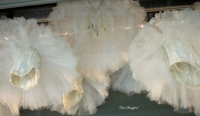 Tutus_suspended_from_the_ceiling