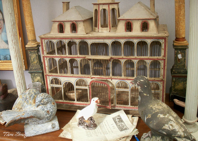 Birds_and_house