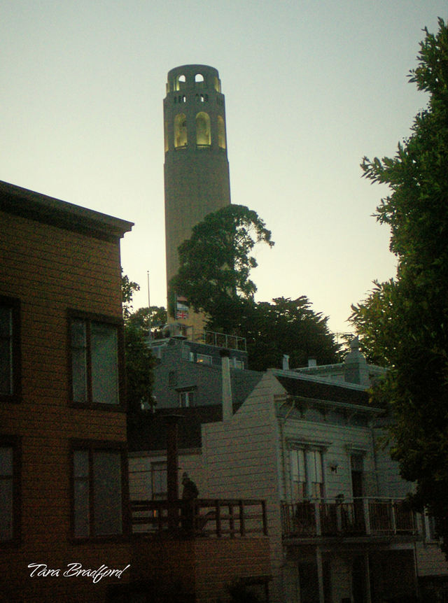 Coit_tower_from_telegraph_hill
