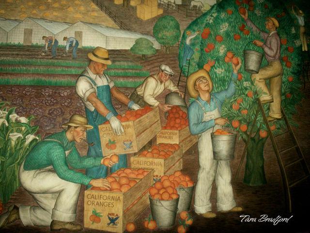 California_oranges